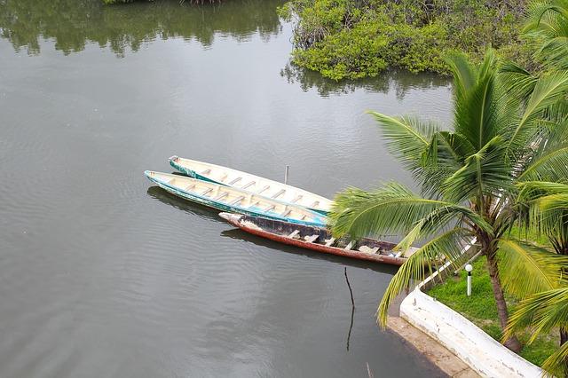 Tour and Travel Bakau crocodile wild life farm the Gambia river boats