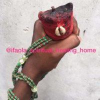 The best powerful herbalist in Nigeria +2348156950703