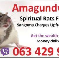 south Africa Money spells usa uk with Amagundwane (@ spiritual rats) +27634299958 Namibia Botswana
